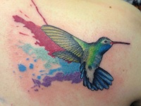 Colorful splashes hummingbird